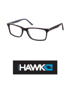 Tony-Hawk-509-2
