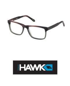 Tony-Hawk-524-2