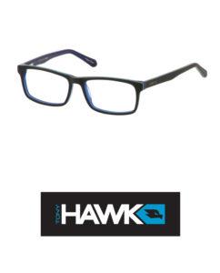 Tony-Hawk-525-2