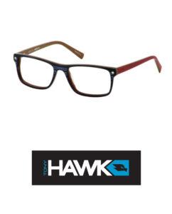 Tony-Hawk-533-3