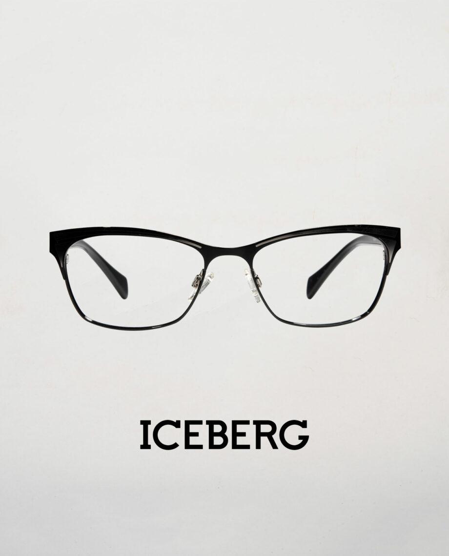 ICEBERG 685 1